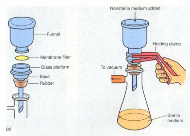 核心提示:不耐热液体培养基的灭菌
