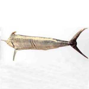 核心提示:英文名:luemarlin俗名:白皮旗鱼产地及产期
